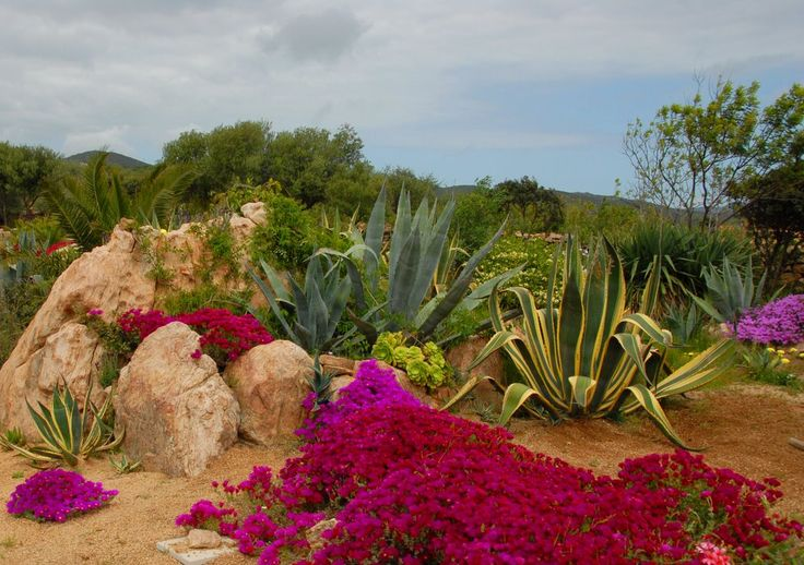 Sardegna 2009 - I giardini  dell'uomo