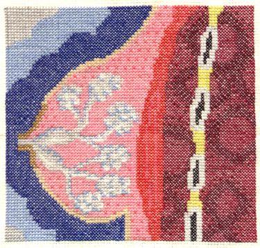 Female Anatomy Cross Section Cross Stitch - NEEDLEWORK Breast Tissue
