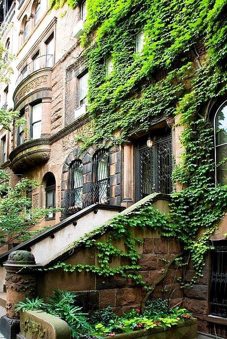 pinterest.com/fra411 #NUC - New York City brownstones are amazing!!!!!! I've loved them since I was a kid growing up in Brooklyn
