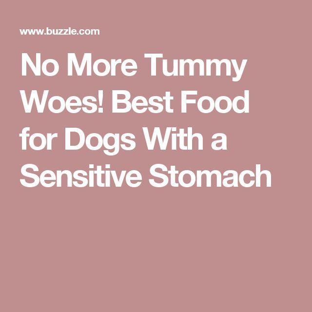 Best Dog Food For Senior Weimaraner