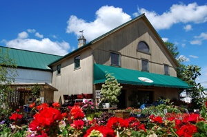 "Head to Shady Brook Farm (@Shady Brook Farm) to see one of Bucks County's finest working farms, shop for fresh and locally grown food at the Farm Market or browse the Garden Center for beautiful landscaping ideas. This photo is part of the Visit Bucks County ""Repin It To Win It Contest."" Repin this photo until May 1, 2012 to win a $25 gift certificate to Shady Brook Farm's Farm Market or Garden Center."