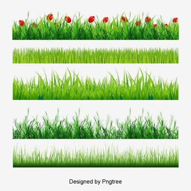 Plante Herbacee Caricature La Decoration Des Elements Png Et Psd Bordure De Fleur Plant Png Image Clipart