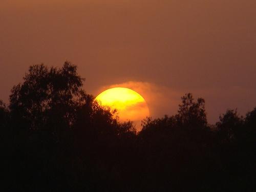 The Burning sun II