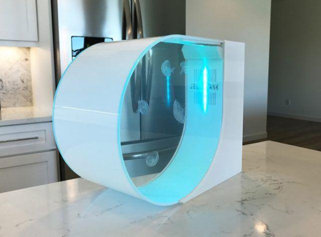 les 25 meilleures id es de la cat gorie aquarium d 39 eau douce sur pinterest aquarium aquascape. Black Bedroom Furniture Sets. Home Design Ideas