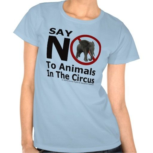 Use of wild animals banned-Facts about circuses