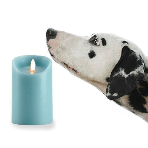 Reallite-Real-Genuine-Wax-Flicker-Flameless-LED-Candle, safe for out beloved Pets... Available here: http://www.ebay.ca/itm/Reallite-Real-Genuine-Wax-Flicker-Flameless-LED-Candle-Moves-Randomly-/200942131058?ssPageName=STRK:MESE:IT