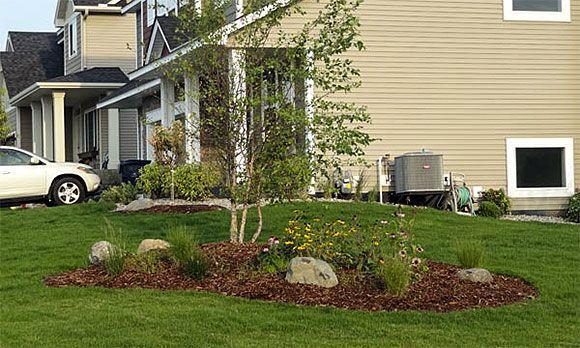 1000  images about berm landscaping on pinterest