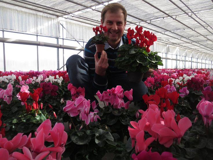 Bart Bostoen van www.bloemenkwekerijbostoen.be/