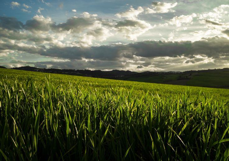 Clouds - Sony A7S + Vivitar 28mm f/2.8