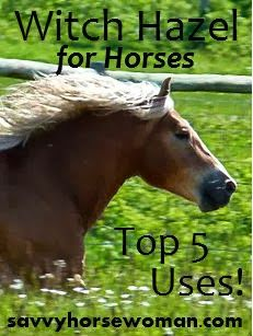 Witch Hazel  is simply amazing, for people and horses. I started out as a reluctant user, butit ...