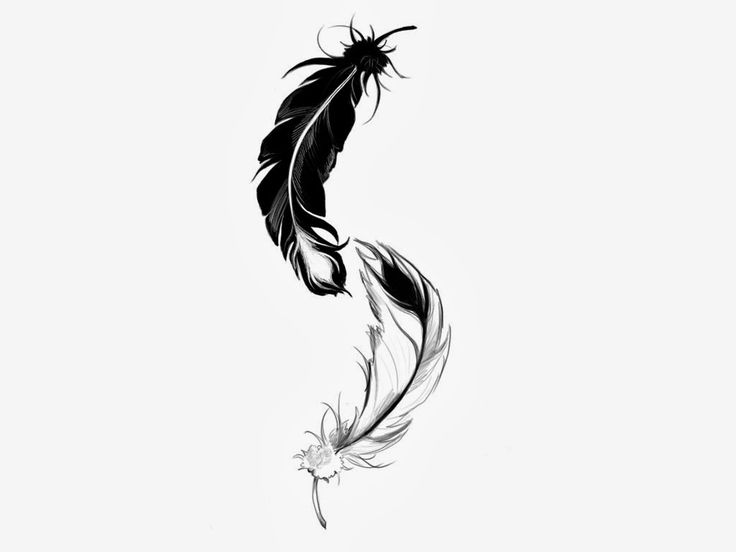 Raven Feather Tattoo   Feather tattoo meaning freedom