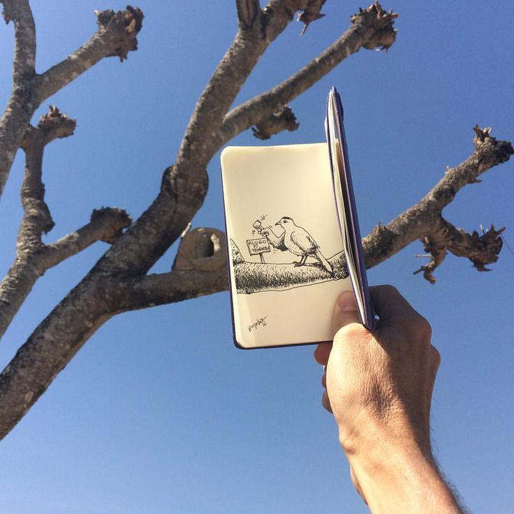 SketchBlog — Alugo para temporada #joaodebarro #bird...