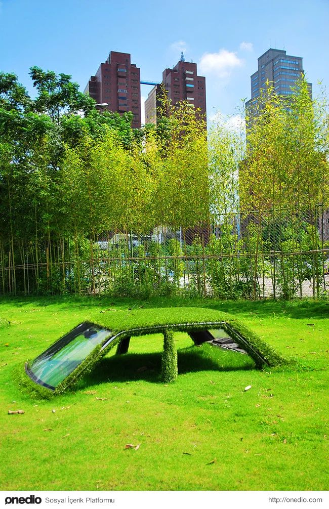 22. Çimler tarafından emilmiş, Taywan'da terk edilmiş bir araba.
