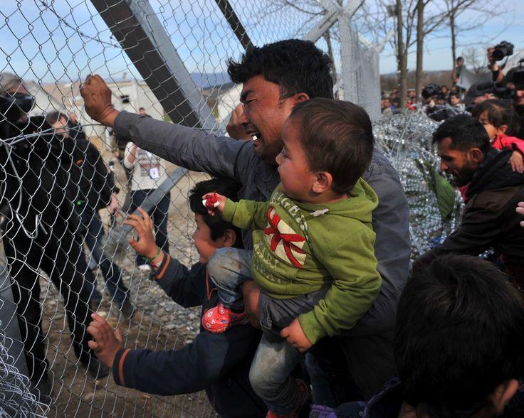 {English below} Un Afghan avec son bébé pleure en tentant de franchir la clôture de la frontière greco-macédoine près du village de Idomeni au nord de la Grèce au cours d'une révolte le 22 février 2016. La Macédoine pays non membre de l'UE refuse de laisser passer les Afghans alors que la Grèce tente de la persuader d'ouvrir le passage à 5000 migrants bloqués derrière sa frontière et dans le port d'Athènes.  Photo : Sakis Mitrolidis pour @afpphoto  A man from #Afghanistan carrying a baby…