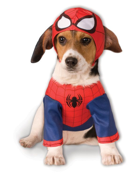 Spiderman Costume For Pet Dog Costumes Funny Pet Costumes Man