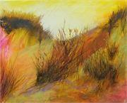 Golden evening dunes