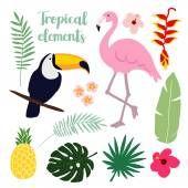 Elementos tropicales de verano. Aves de tucán y flamingo. Ilustraciones florales selva, hojas de Palma, vectores — Vector de stock