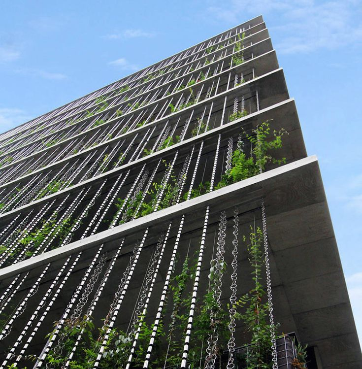 Vegetal Rain-Chains Facade Building in Japan8