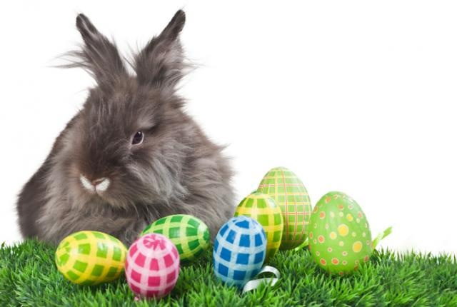 Where Did The Easter Bunny Come From? ~ from Mental Floss