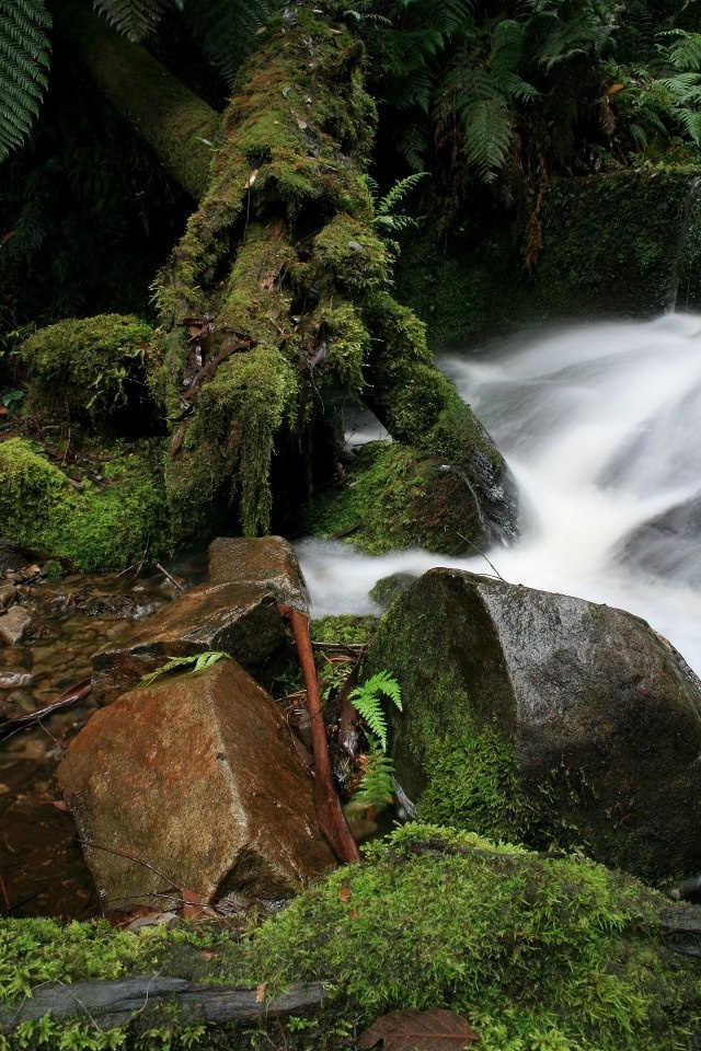 Jelenia Struga - the stream next to the hotel www.jeleniastruga.pl