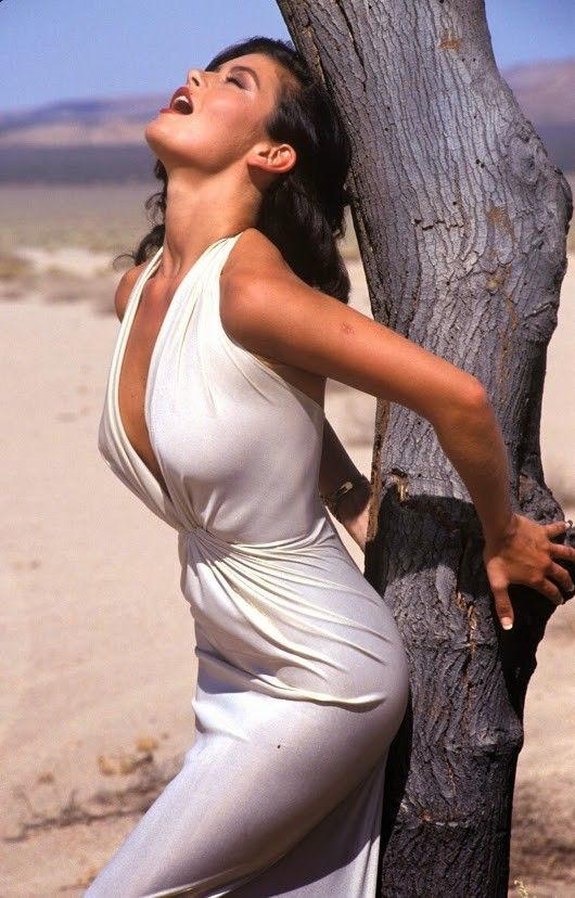 nice and famous: Evangeline Lilly