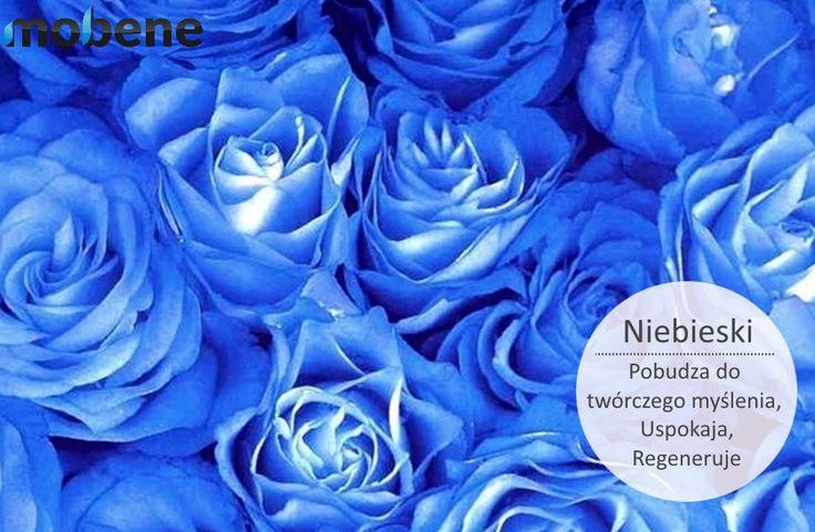 Któż nie lubi tego pięknego koloru Emotikon wink.  #niebieski #kolor #meble #mobene #relaks #inspiracja