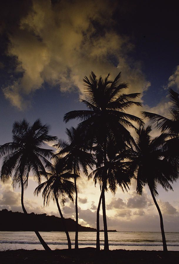 ✮ Sunrise at La Sagesse Bay over Marquis Point, Grenada