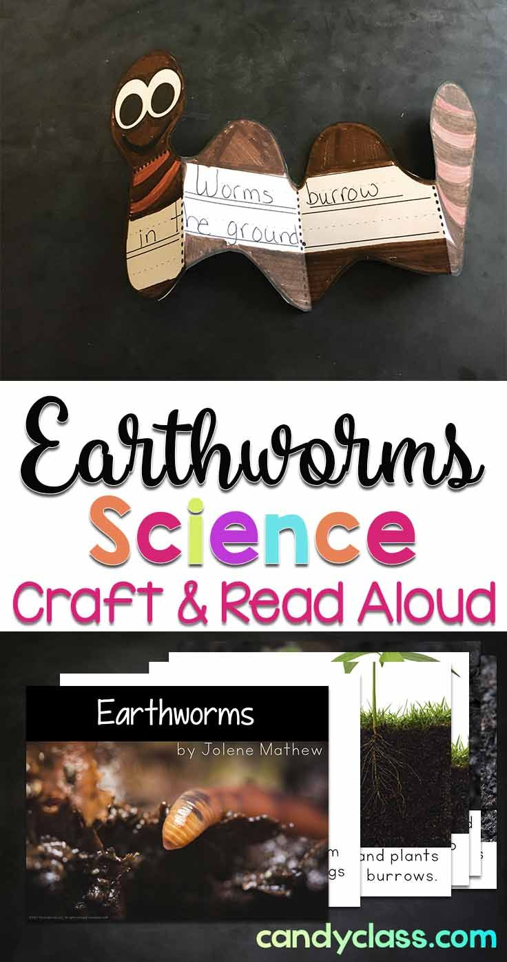 Let students write about earthworms as they learn about them from the read aloud book or pair with earthworm observations. The worm non-fiction book can be projected on an interactive whiteboard or printed. The reading response activities are perfect for some spring science learning! The worm craft come with different writing line options for differentiating for kindergarten, first grade, and 2nd grade classrooms.
