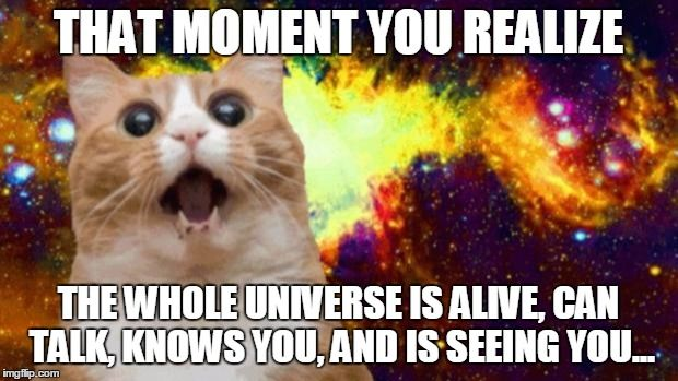 space cat Meme Generator - Imgflip