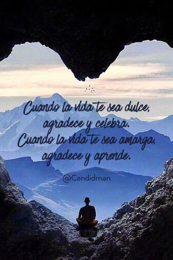 20160613 Cuando la vida te sea dulce, agradece y celebra. Cuando la vida te sea amarga, agradece y aprende. - @Candidman pinterest