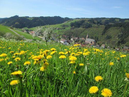 Oberharmersbach im Frühling