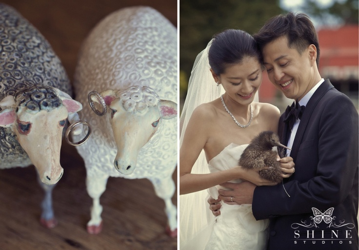 Wedding photos at The Farm at Cape Kidnappers, luxury lodge in Hawke's Bay New Zealand.  #Kiwi
