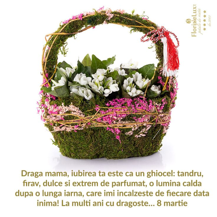 felicitare 8 martie pentru mama https://www.floridelux.ro/flori-pentru-ocazii/flori-cadouri-sarbatori/flori-8-martie/flori-pentru-mama/