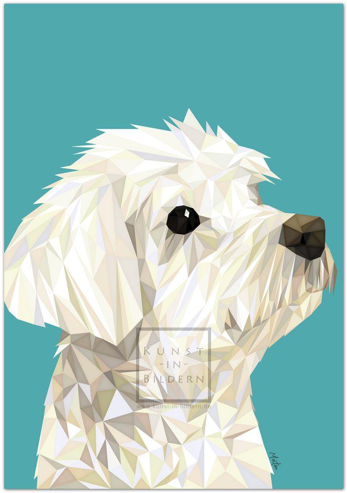 Ich bin ein Malteser by Moitao. #hund #dog #hunde #dogs #kunst #art #digital #illustration #malteser #maltese | http://www.kunst-in-bildern.de/bildergalerie/malteser