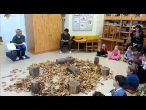 """Kardos Szilvia: """"Hódító hódok és barátai""""-komplex környezeti foglalkozás"""
