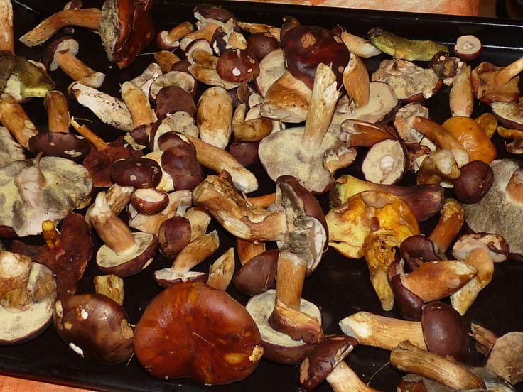3_nakladane-houby-v-octe