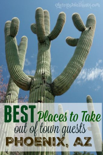 BEST Places to Take Out of Town Guests in Phoenix