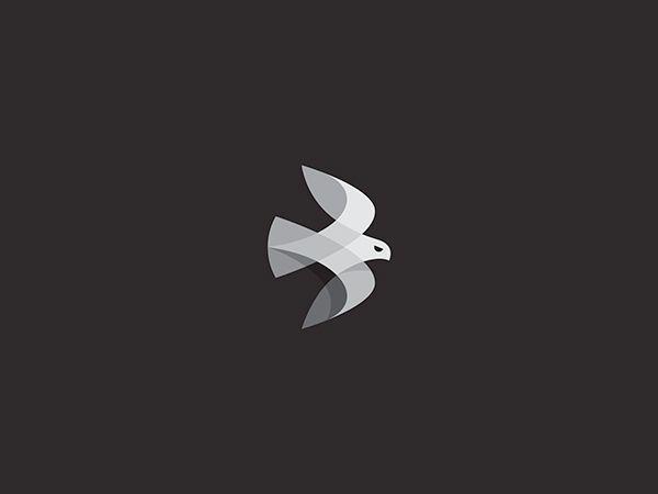 Beautiful Birds on Behance