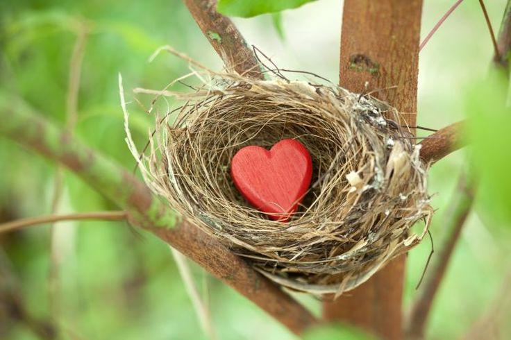 Αγάπη δεν είναι να ζεις με θυσίες Η αγάπη, όπως εγώ την αντιλαμβάνομαι, δεν είναι να ζεις με θυσίες, αλλά το ακριβώς αντίθετο. Πρέπει να μάθουμε να καταγράφουμε στο ημερολόγιό μας όλα όσα κάνουμε με αγάπη. Όλα όσα κάνουμε για τον άλλον εγωιστικά. Η ενήλικη αγάπη, κατά την άποψή μου, αποκαλύπτεται από τη στιγμή που …