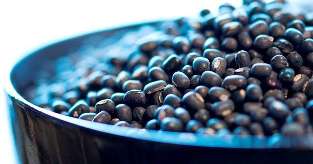 Health And Nutritional Benefits Of Black Matpe Beans   Health And Nutritional Benefits Of Black Matpe Beans   Black beans black matpe Vigna mungo or Urad whole black is a pulse that has been cultivated in South Asia. White urad dal - split or one piece made of black beans after removing the peel. Black beans originated in India and is considered one of the most prized possessions of all pulses. It comes from antiquity. Black beans have been introduced into other tropical regions around the…