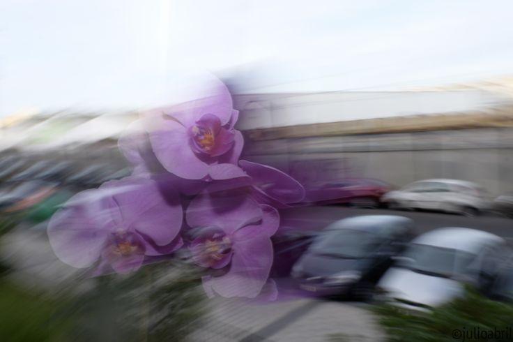 Fotos con el Flash.  Disparos a diferentes velocidades y con diferentes aperturas