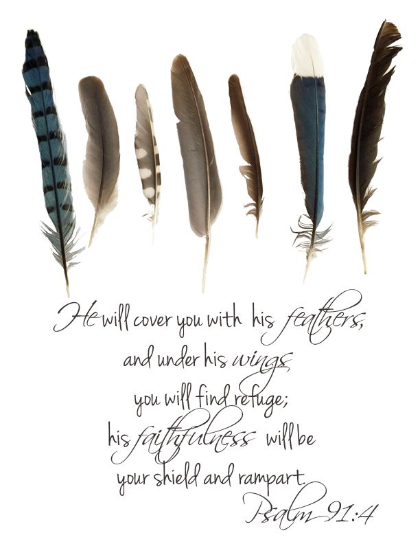 More on Feathers, God's Message To You and a FREE Printable