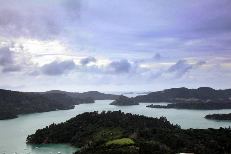 Whangaroa Harbour is where the Houseboat is based