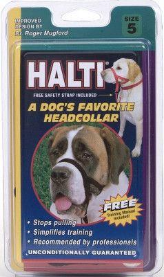 DOG TRAINING EQUIPMENT - WALK 'N TRAIN HEAD HALTER (HOLT) - SIZE 5 BLACK - COASTAL PET PRODUCTS, INC. - UPC: 76484515019 - DEPT: DOG PRODUCTS