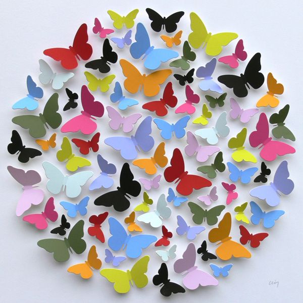 Multi-coloured Box of Butterflies