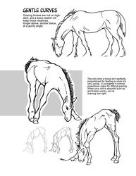 Majestic Movement - How to Draw Horses