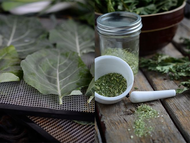 Preserving the Harvest: Super Green Veggie Powder (It'a ao easy. You never have to let greens go to waste again.)