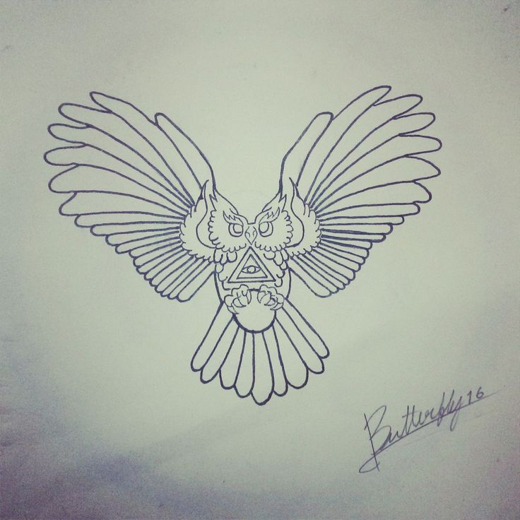 sketch Owl tattoo