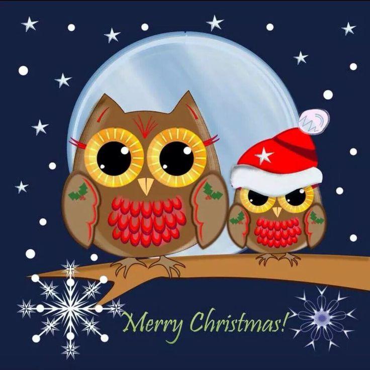 Owl love                                                       …