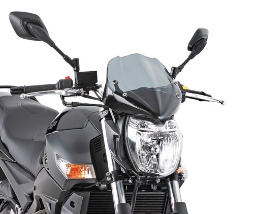 247A - Universal cockpit screens for Naked motorcycles, smoked colour (H x W) 29 cm x 28,5 cm
